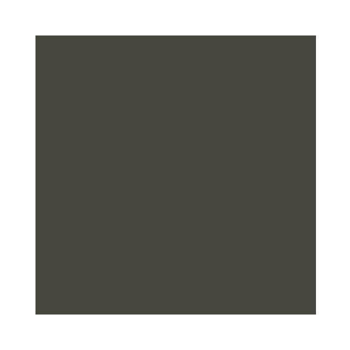 Charcoal argenté-2114C